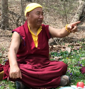Rinpoche at picnic